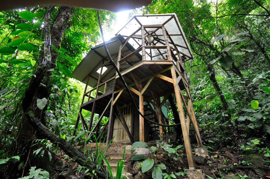 Okokno The Ultimate Treehouse Finca Bellavista