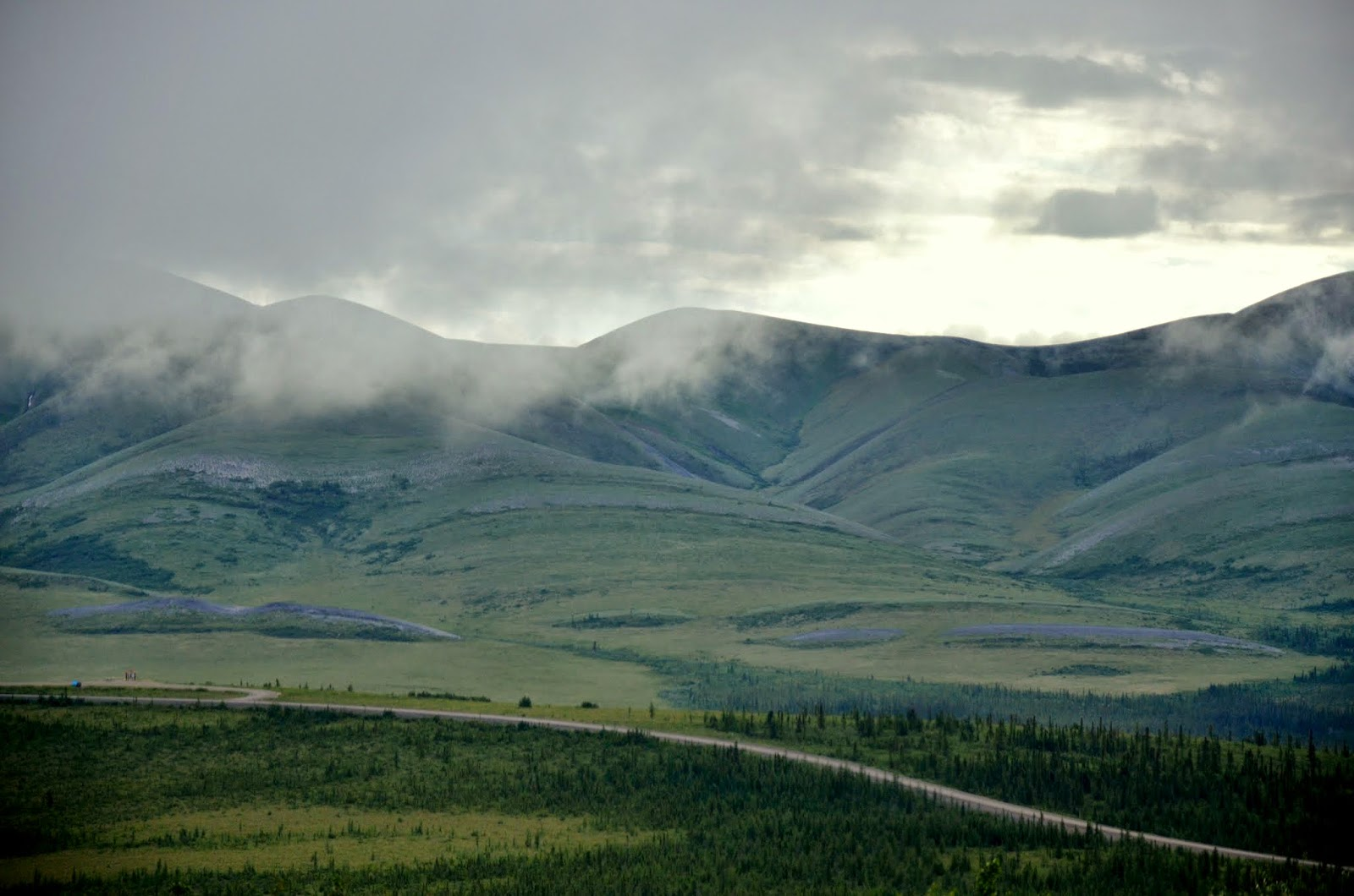 Landscape where 169,000 porcupine caribou herd winters.
