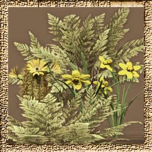 http://2.bp.blogspot.com/-_TM8K_YIkx0/VaLBCUWPcUI/AAAAAAAADOE/SgqVSxU38Ko/s1600/Mgtcs__Bushes_Flowers_2014.2.jpg