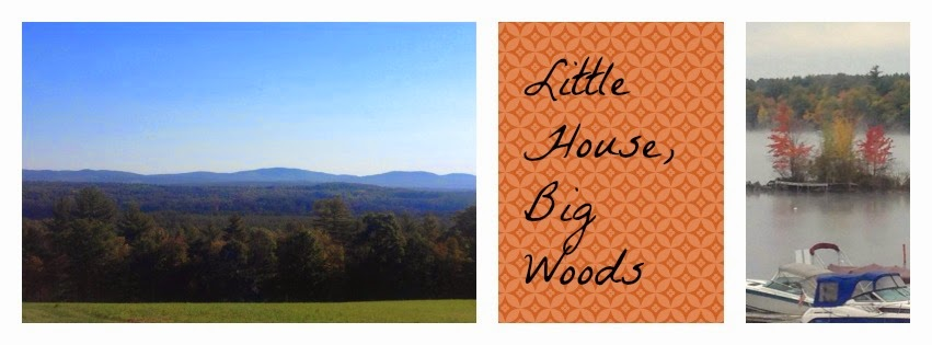 Little House, Big Woods