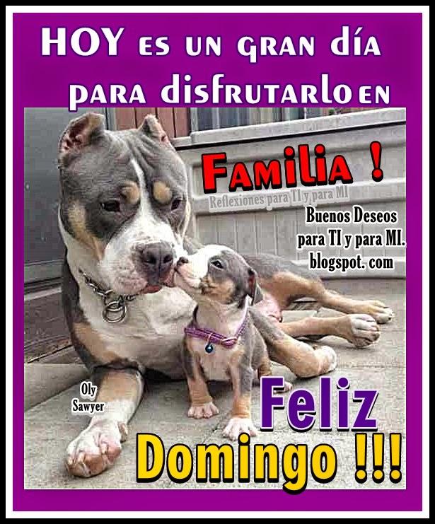 HOY es un gran día para disfrutarlo en Familia!  FELIZ DOMINGO !!!