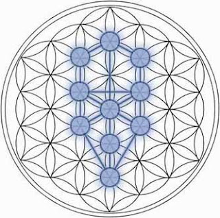Geometría Sagrada al Descubierto Tolseedlife