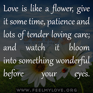 Love is like a flower, give it some time