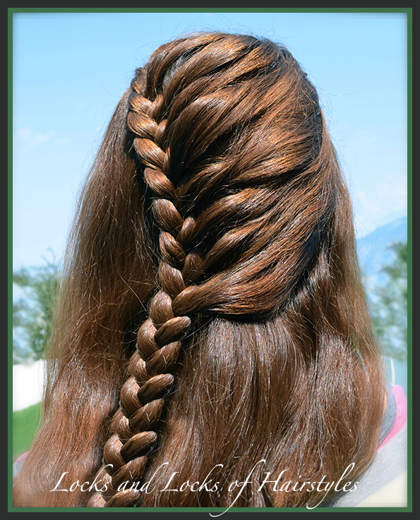 if this braid were not already referred to as a lace braid