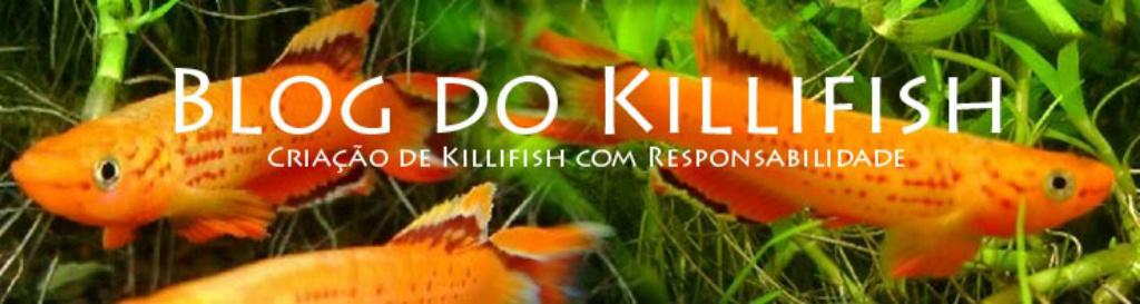 Tudo sobre killifish