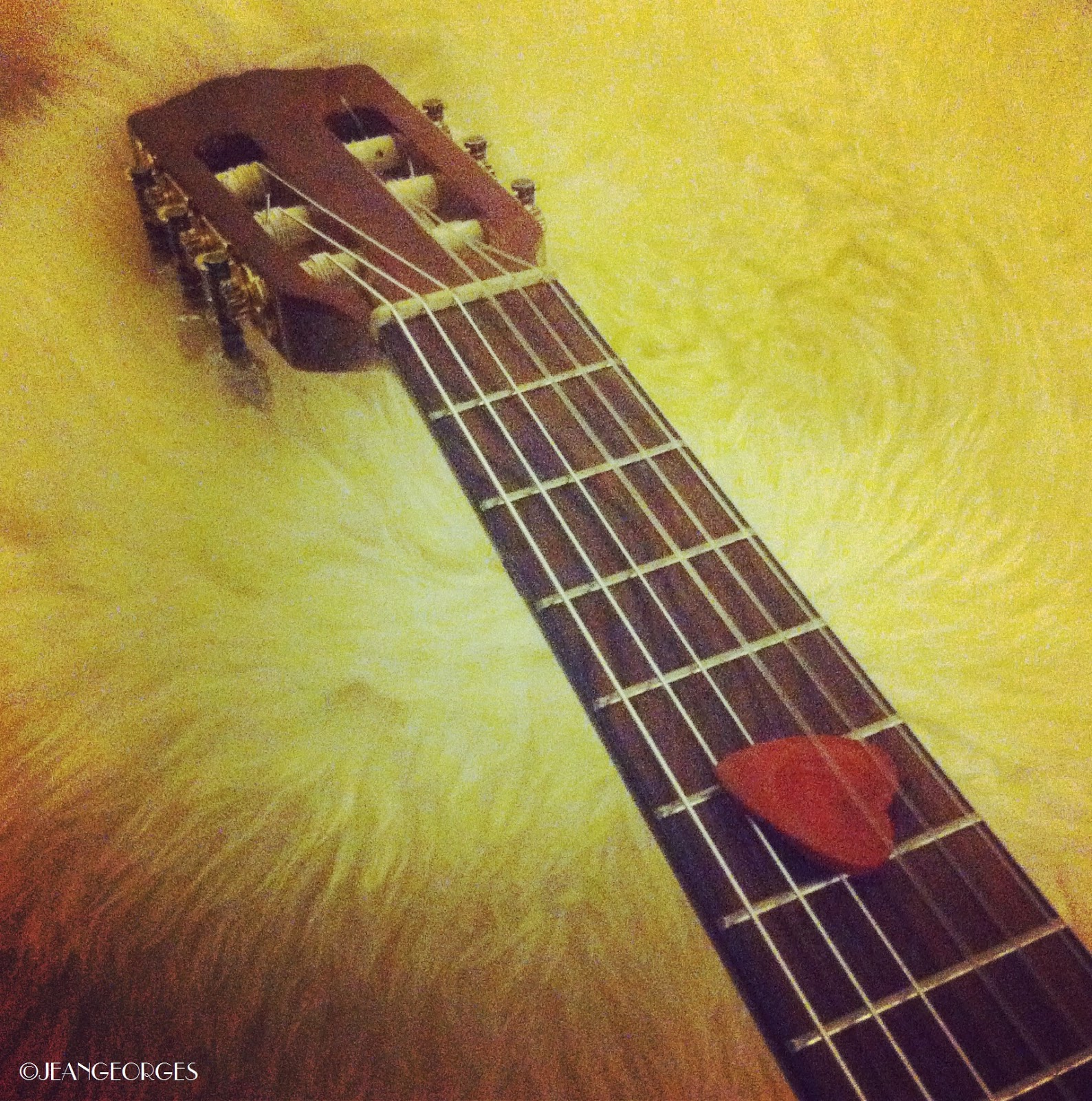 guitare d'amour