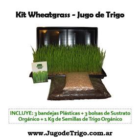 JugodeTrigo.com.ar