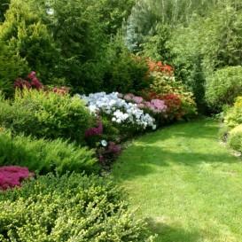 Wszystko O Ogrodzie Jak Zaprojektować Ogród Przydomowy