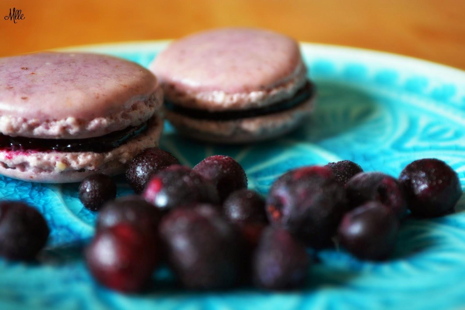 http://mademoisellepetitpoint.blogspot.de/2014/03/finalement-macarons-des-myrtilles.html