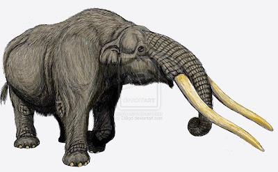 elefantes en america del sur Cuvieronius aea=