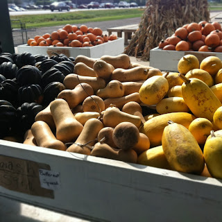 Farm Fresh Assorted Winter Squash and Pie Pumpkins