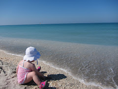 Some favorite photographs over the years...                            Captiva, FL