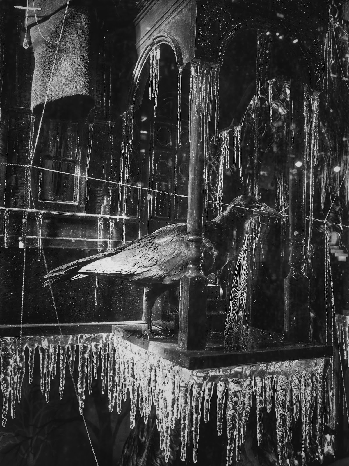 Nevermore, #raven #nevermore #Halloween #spider #holidaysonice #bgwindows #nyc #bergdorf #nyc 2014