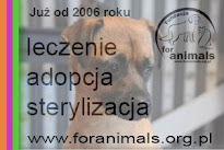 www.foranimals.org.pl