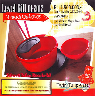 Level Gift Tulipware | Januari - Februari 2012