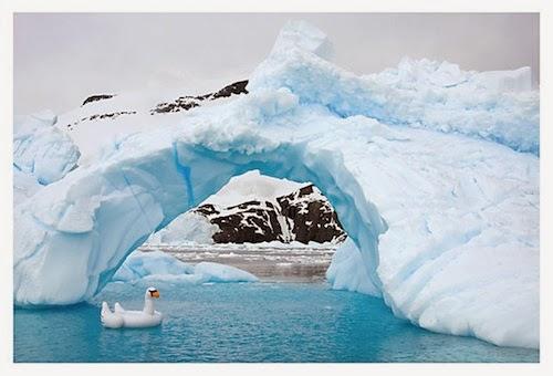 gray malin antarctica
