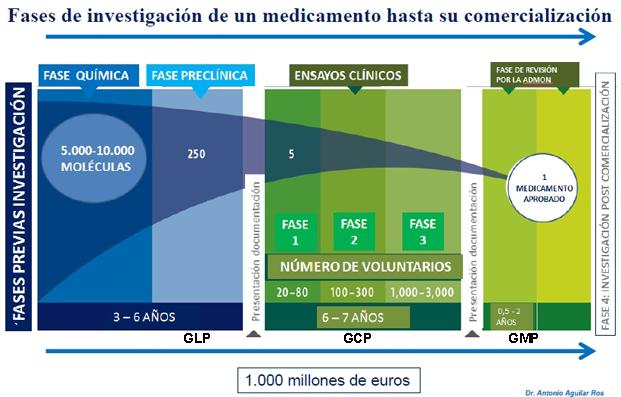 Fases en el desarrollo de fármacos