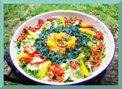 salade variee à la spiruline avec sauce citron