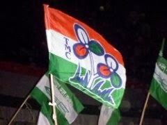 Trinamool congress flag