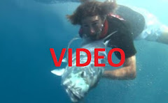 Maldives fishing video