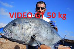 Wild Anglers: Andrea