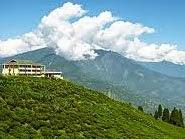 Tea Garden Resort Lembang