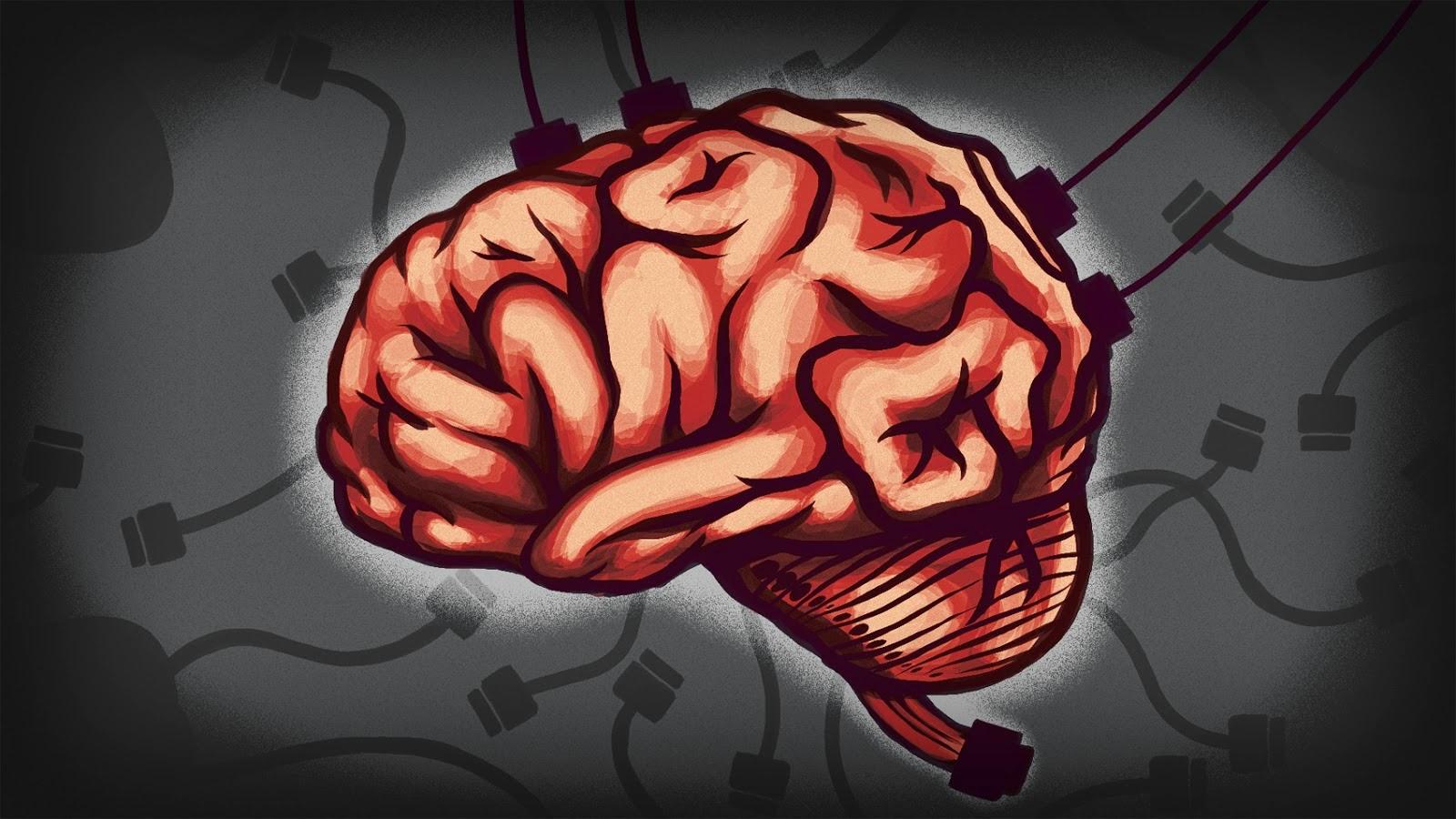 Cerebro conectado cables