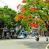 Khúc tháng Sáu- Thuận Thảo