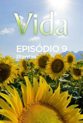 Vida - Episódio 9: Plantas - DVDRip Legendado