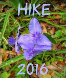 ~~~~~~~~Hikes in 2016~~~~~~~~