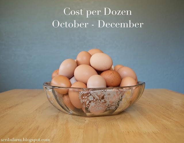 dozen eggs molt