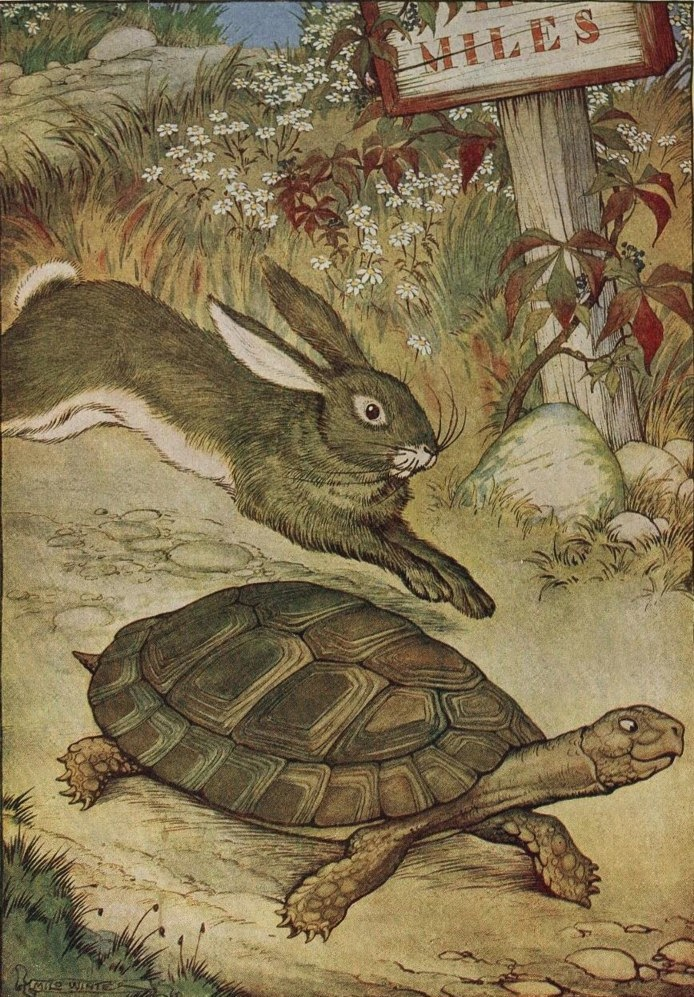 The Tortoise and the Hare From ''The Æsop for Children'', by   Æsop, illustrated by Milo Winter