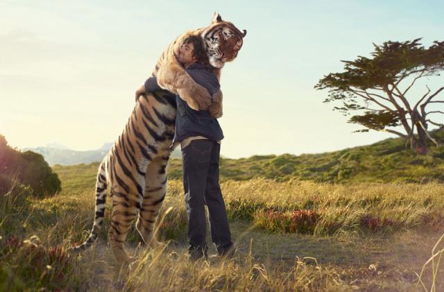 tiger man hugging