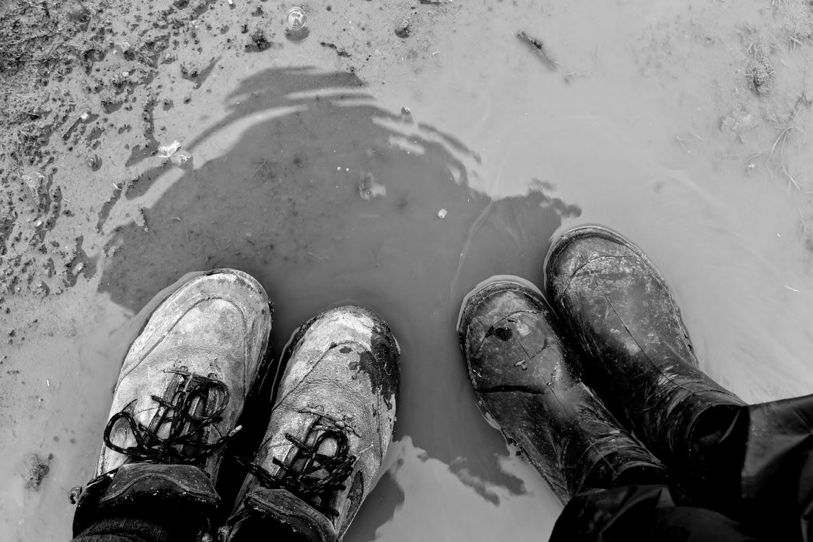 Muddy puddle // 76sunflowers