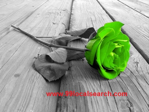 Green rose amazing dnsvrm