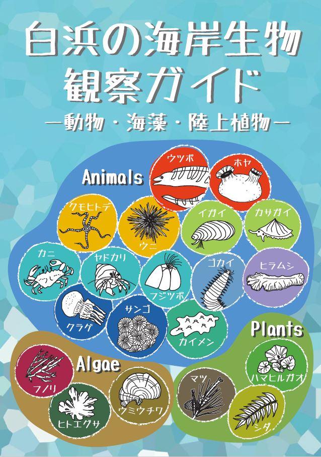 白浜の海岸生物観察ガイド―動物・海藻・陸上植物―(2018)が出版されました