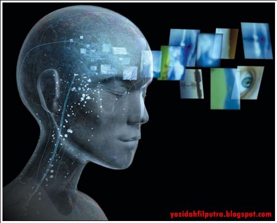 http://2.bp.blogspot.com/-_YCbR66M1B8/UTF58zcIEuI/AAAAAAAADW4/GSzZ6lFrt1k/s1600/Misteri+otak+manusia+2-yozidahfilputra.blogspot.com.jpg