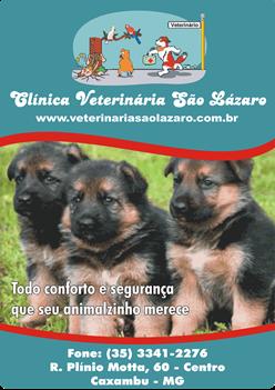 Clinica Veterinária São Lázaro