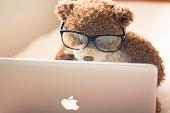 adoro passear na net afinal sou blogueira
