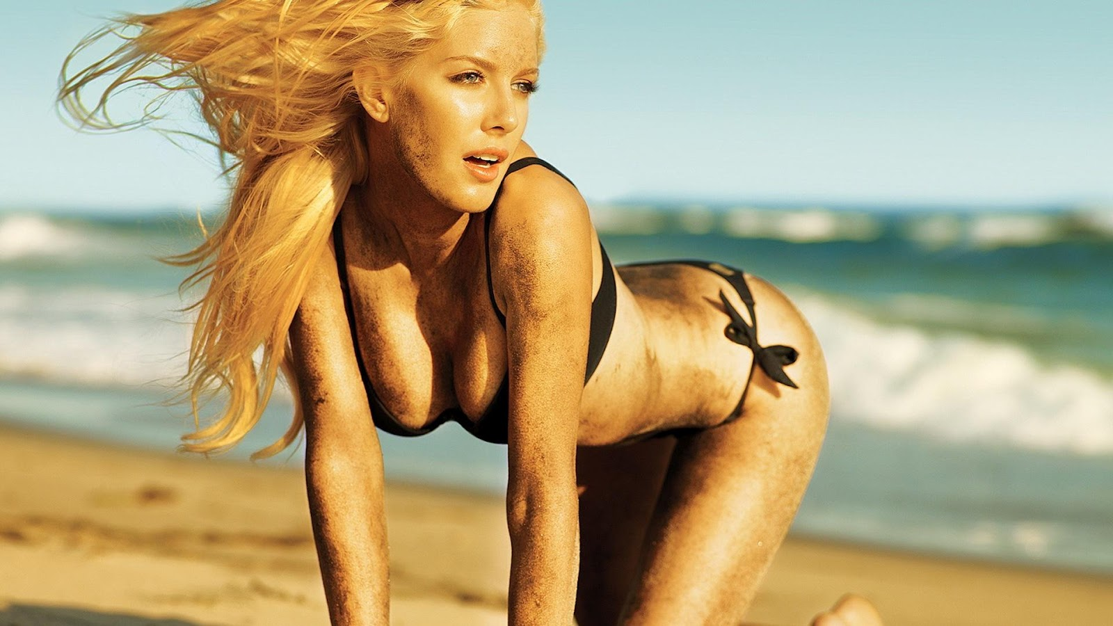 Hot Wallpapers of Hollywood Celebrities
