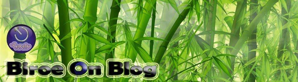 BiroeOnBlog