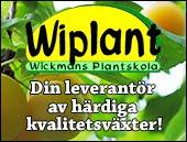Köp Närpespresentkortet hos Wickmans Plantskola! + ett träd förstås!