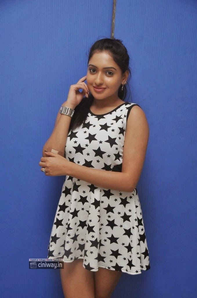 Anjana-Deshpande-Latest-Stills-at-Nenu-Naa-Friends-Success-Meet