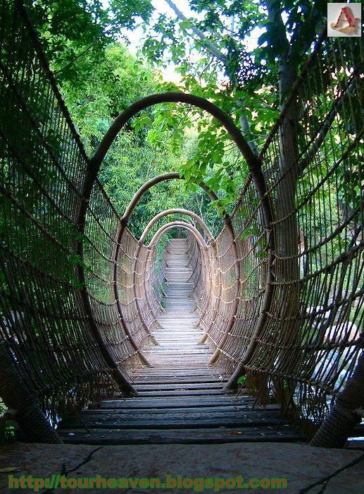 Amazing Spider Bridge In Sun City Resort South Africa World Tourism