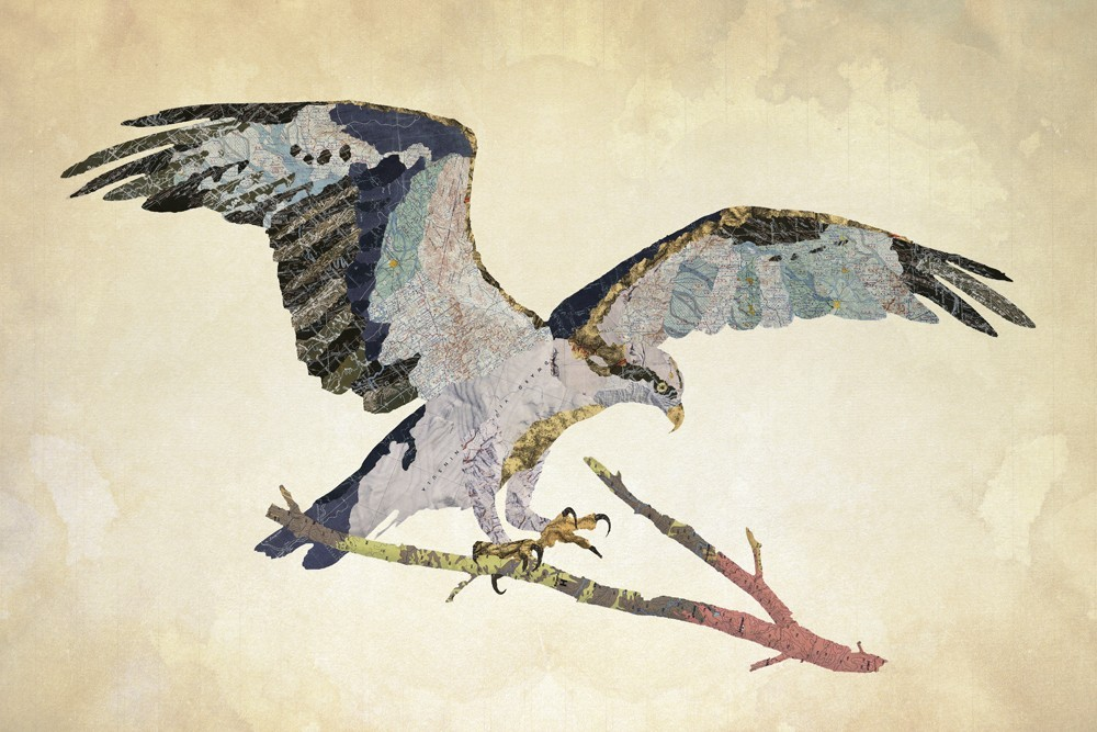 13-Osprey-Jason-LaFerrera-Cartography-Shaped-to-make-Map-Animals-www-designstack-co