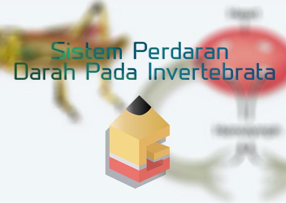 Sistem Perdaran Darah Pada Invertebrata Beserta gambarnya