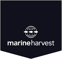 http://www.marineharvest.com/about/news-and-media/news/mhg---change-to-the-board-of-directors1/