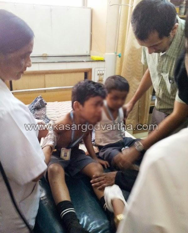 Kumbala, Accident, School, Bus, Kasaragod, Kerala, Thudayar