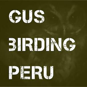 Gus Birding