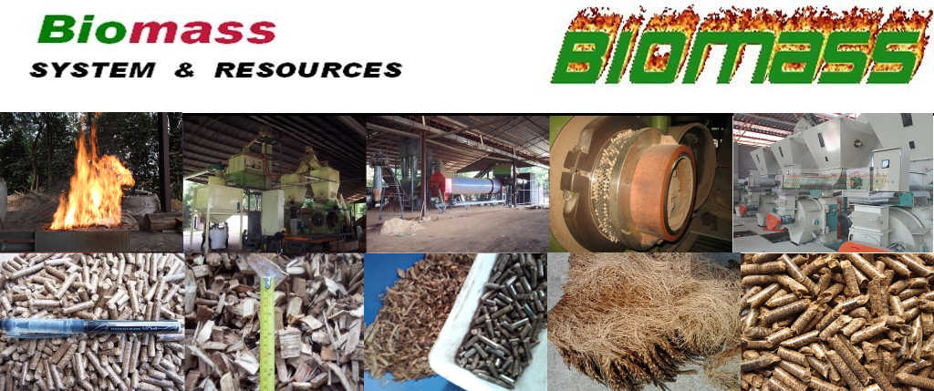 BIOMASS SYSTEM & RESOURCES